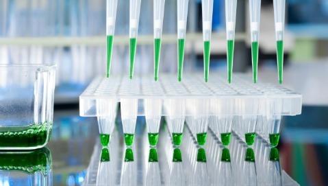 Un test genetico per diagnosticare il tumore del colon-retto