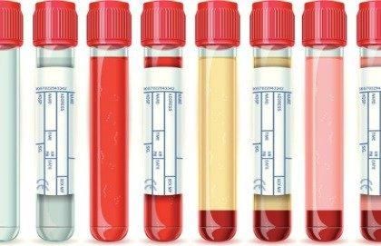 Come cambia il sangue di un ciclista durante una gara