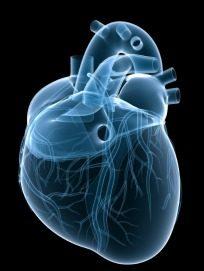 Troppe radiazioni per i pazienti cardiopatici?