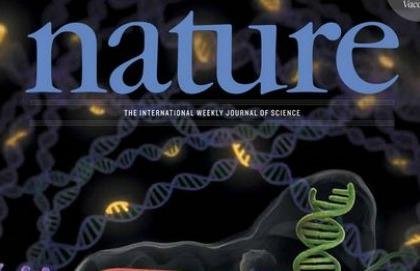 Frodi scientifiche: la rivista Nature corre ai ripari
