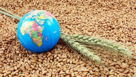 Come si mangia oggi nel mondo?