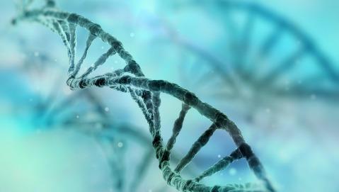 Terapia genica: approvato il primo farmaco per l'ADA-SCID