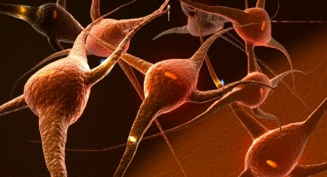 SLA: identificato il gene responsabile