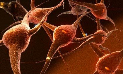 SLA: al via la sperimentazione con le cellule staminali