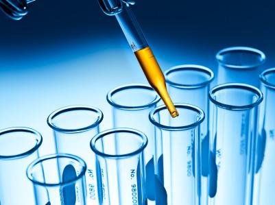 Dalle staminali le future cure per le malattie rare di fegato e reni