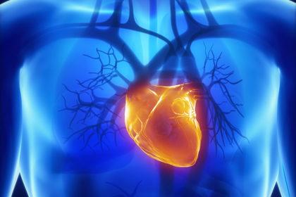 La «molletta» che salva il cuore inoperabile