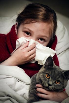 Allergie pediatriche: dieci miti da sfatare