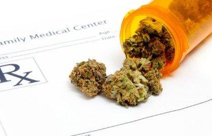Cannabis terapeutica: ecco a chi può servire
