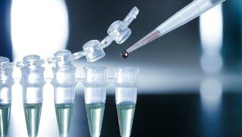 Contro il diabete ora si guarda alle staminali embrionali