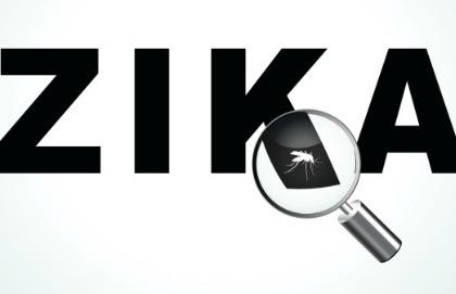 Zika, 6 mesi di sesso protetto se si torna da aree a rischio