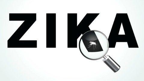"Brasile, virus Zika ""colpevole"" dei casi di microcefalia?"