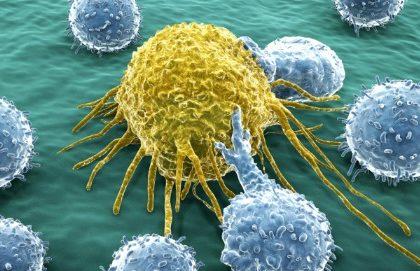 L'immunoterapia contro i tumori è la svolta dell'anno