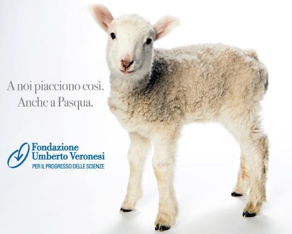 Menù di Pasqua: le alternative all'agnello