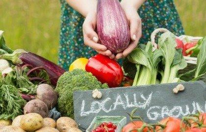 Gli alimenti biologici non abbassano il rischio di cancro
