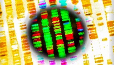 Rivoluzione digitale: qual è l'impatto dell'innovazione nella ricerca scientifica?
