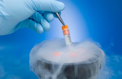 La casa degli embrioni senza fondamenta