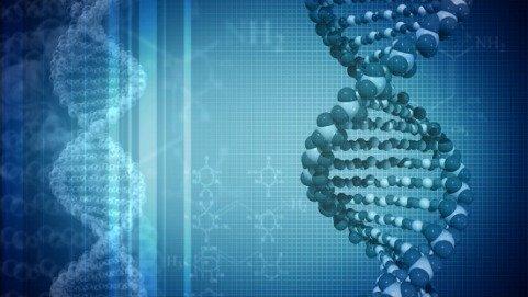 Nuove possibili terapie per linfomi e leucemie