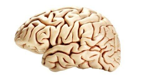Aneurismi cerebrali: ora si possono curare senza bisturi