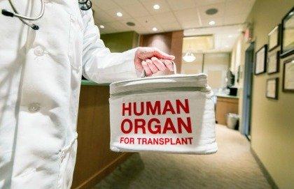 Anche il rene può arrivare da una persona viva
