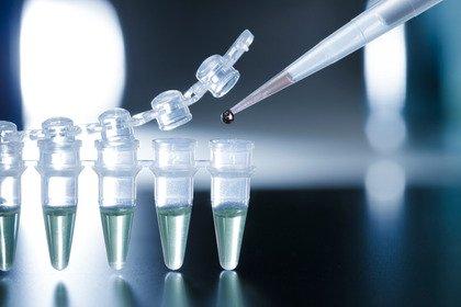 Danni al midollo spinale: soluzione dalle staminali?