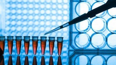 Mieloma multiplo, molti progressi e nuovi farmaci efficaci